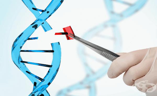 генен инженер - снимка: Медицинска енциклопедия - Фрамар1